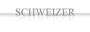 Schweizer 30pt - Entstörkondensatoren und Kondensatoren für die Elektronik